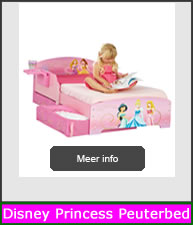 Disney Princess Peuterbed